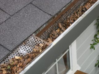 gutter clean out bradenton